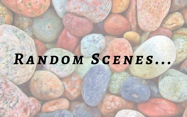 Random Scenes challenge for writing prompts stressed