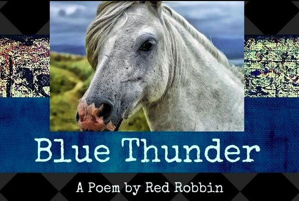 blue thunder, poetry, how to write a poem